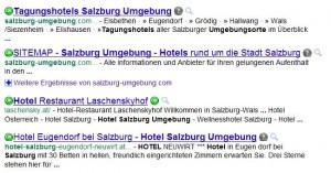 Suchergebnisse auf Google